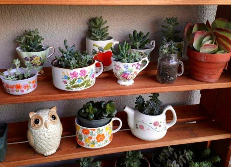 originales ideas cultivar plantas taza