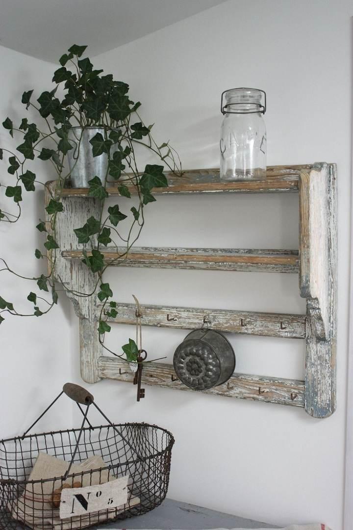 pared estante imagen vintage plantas