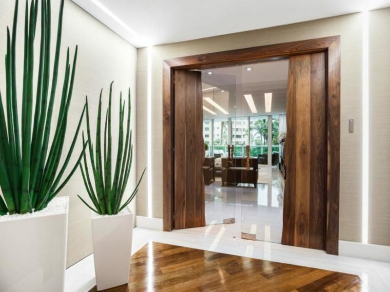 pasillo entrada recibidor puerta madera