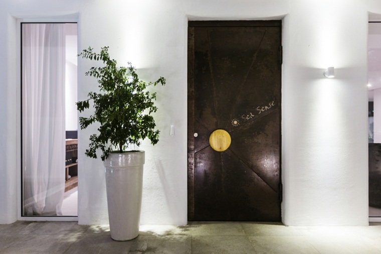 plantas comunes maceteros cortinas fuentes