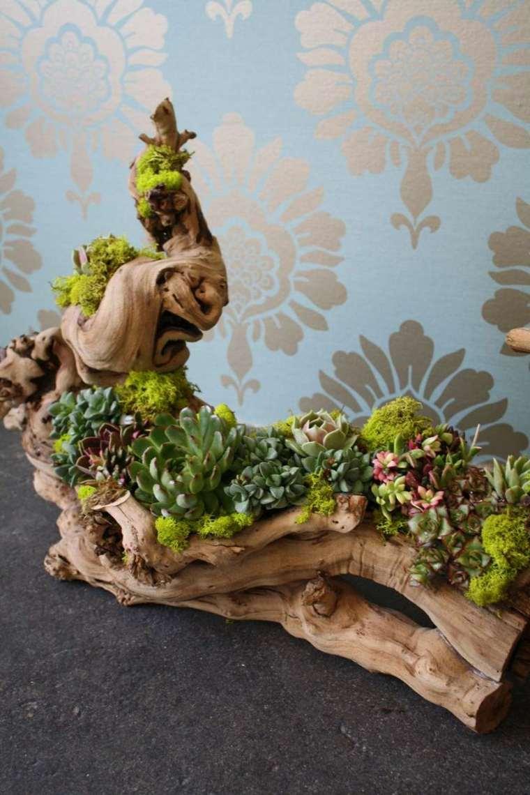 tronco madera deriva plantas