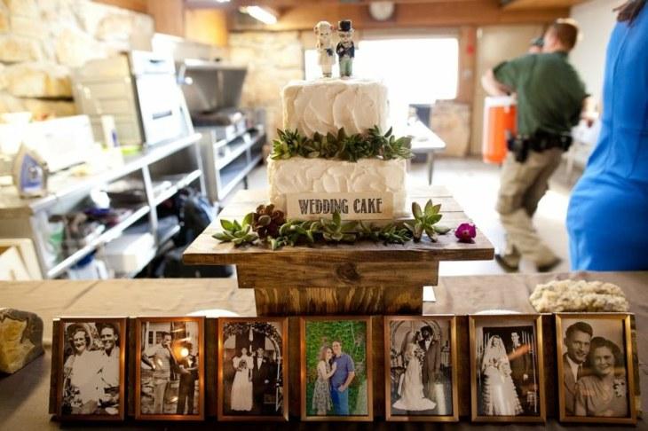 cuadros mesa suculentas decorados familiar