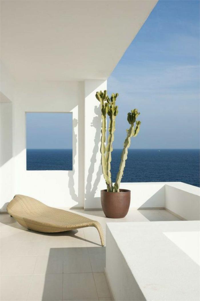 natural fresca casa concepto plantas mar