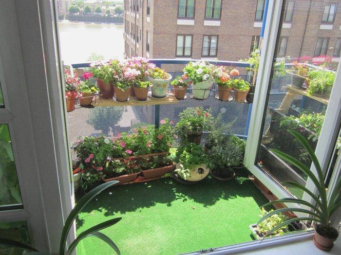 suelo tapete verde plantas lineas macetas