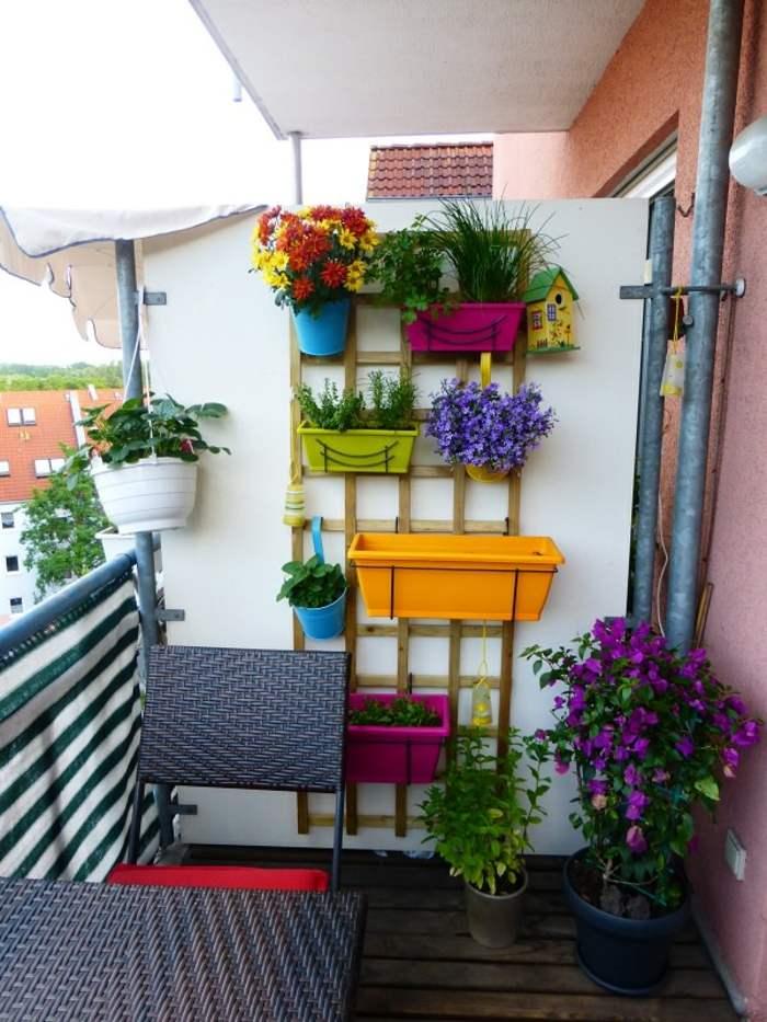 colorido especial casas muebles maderas claras