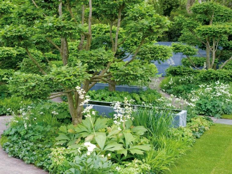 decoracion jardin arboles conceptos muestras verdes