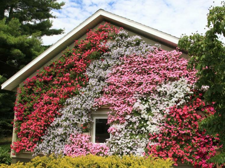 fachadas flores estilo elegante creativo lineas estils