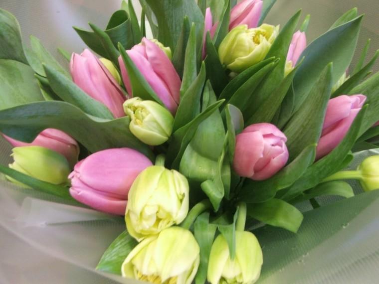 flores de pascua decoración interior