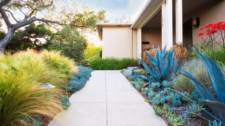 hierbas jardines conceptos muebles salas colores
