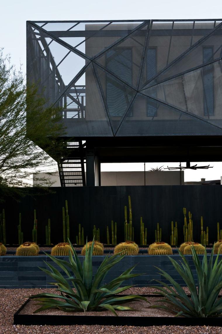 paisaje cactus estilo conceptos modernos consejos