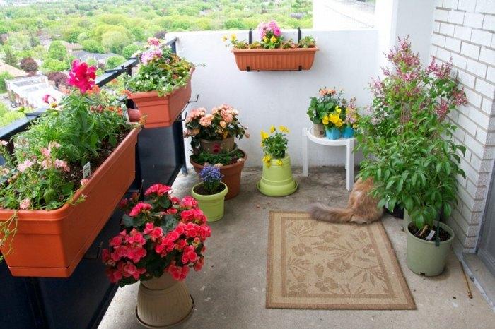 plantas alfombrasin muebles casa metales