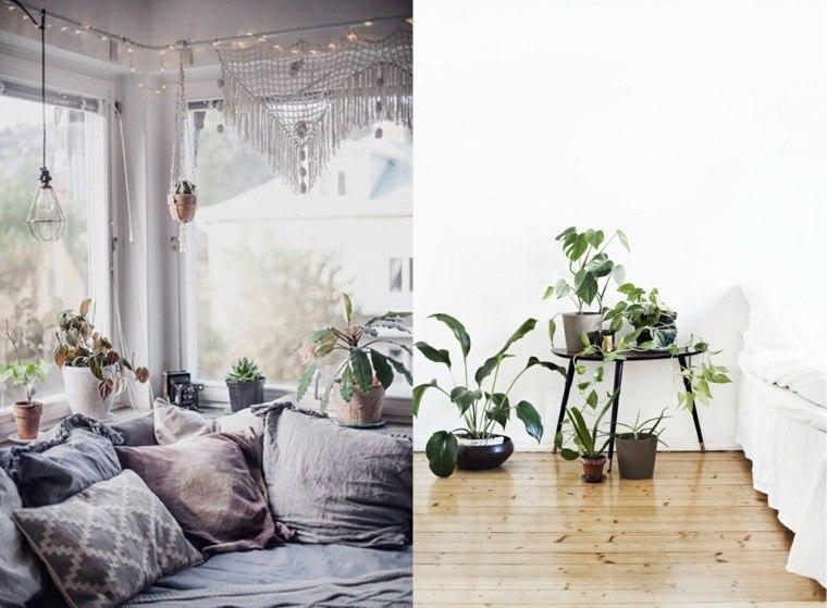 plantas efectos decoracion muebles ideas