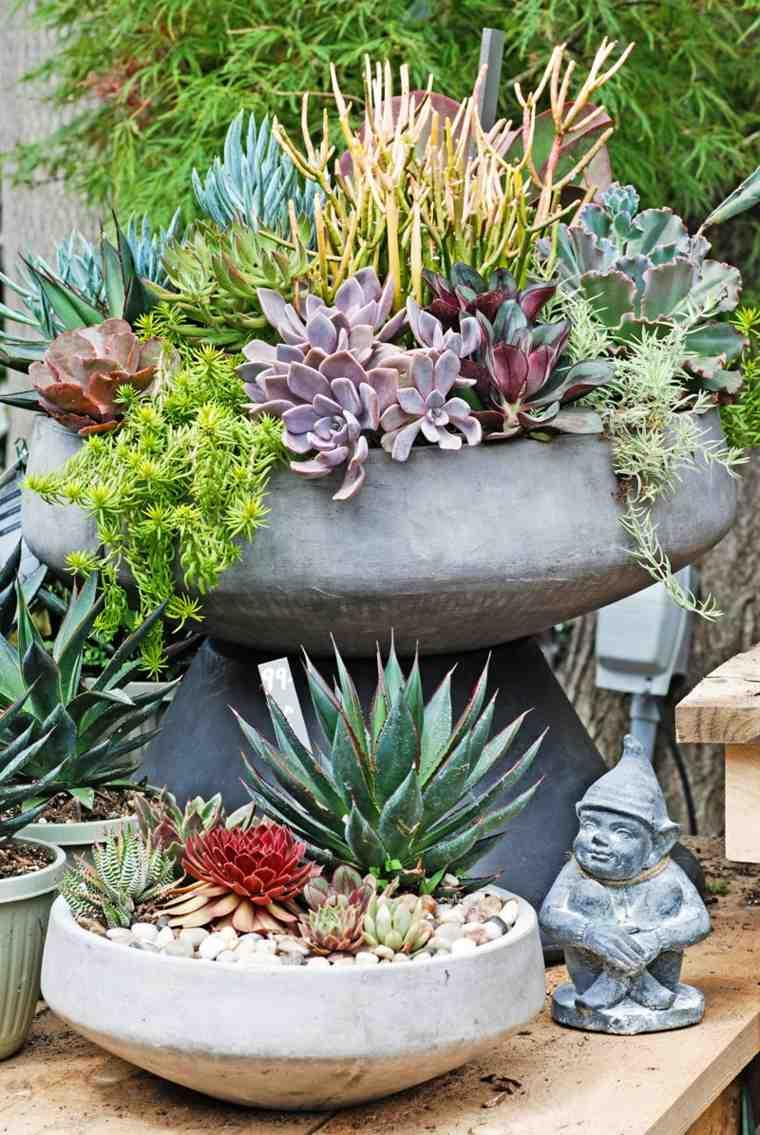 cactus decoracion interior casa