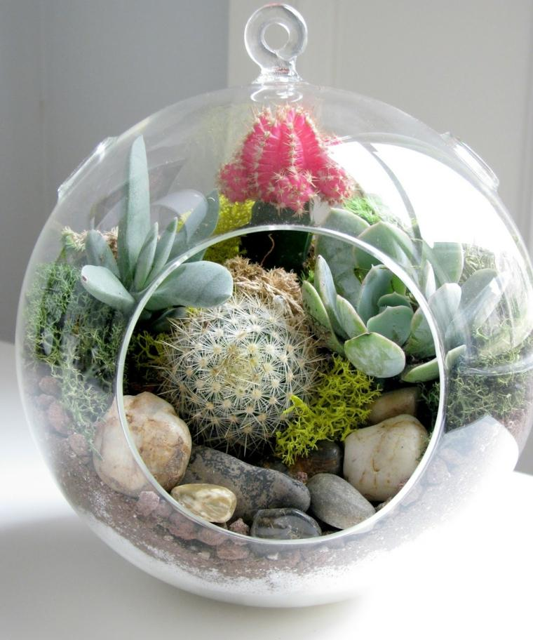 centos de cactus decorar interior