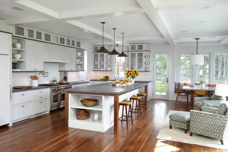 cocina estilo moderno isla Allison Babcock Design ideas