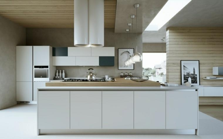 cocinas blancas modernas paredes madera campana blanca ideas