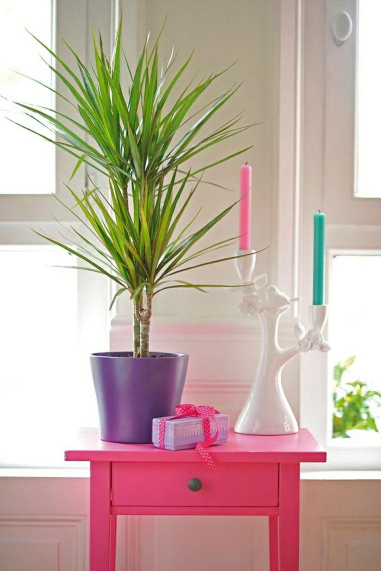 coloridos ambientes estilos conceptos combinaciones