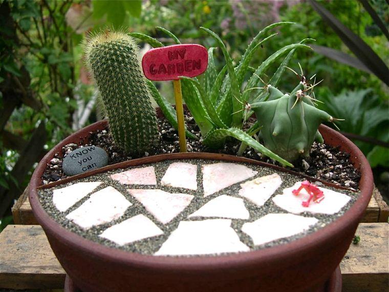 decoracion cactus interior casa