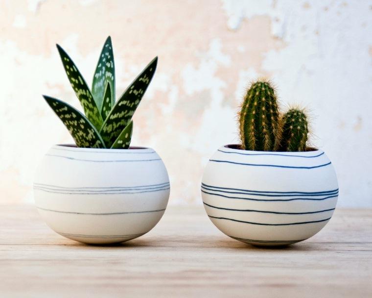decoracion con cactus interior casa