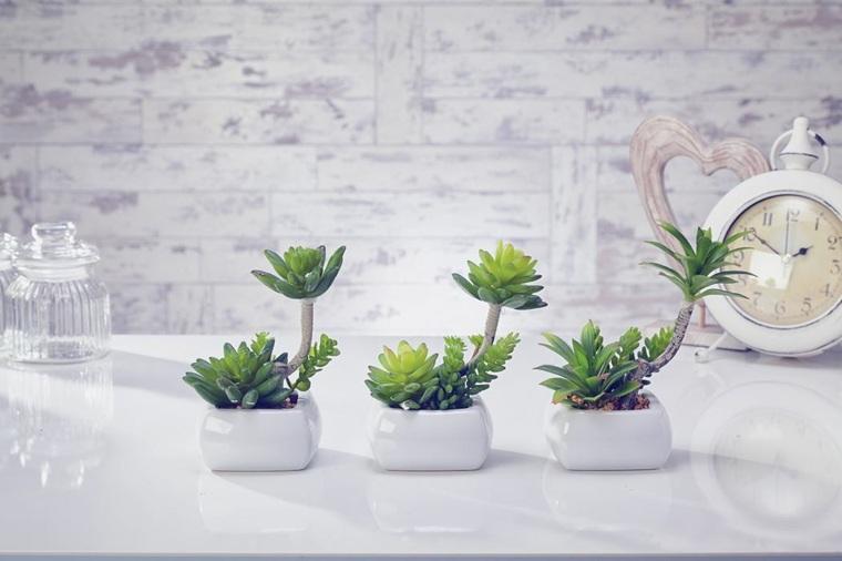 decoracion con cactus interiores