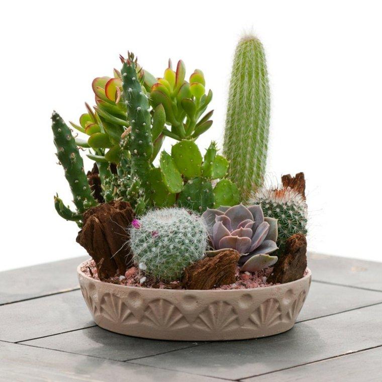 decoracion con cactus mesa