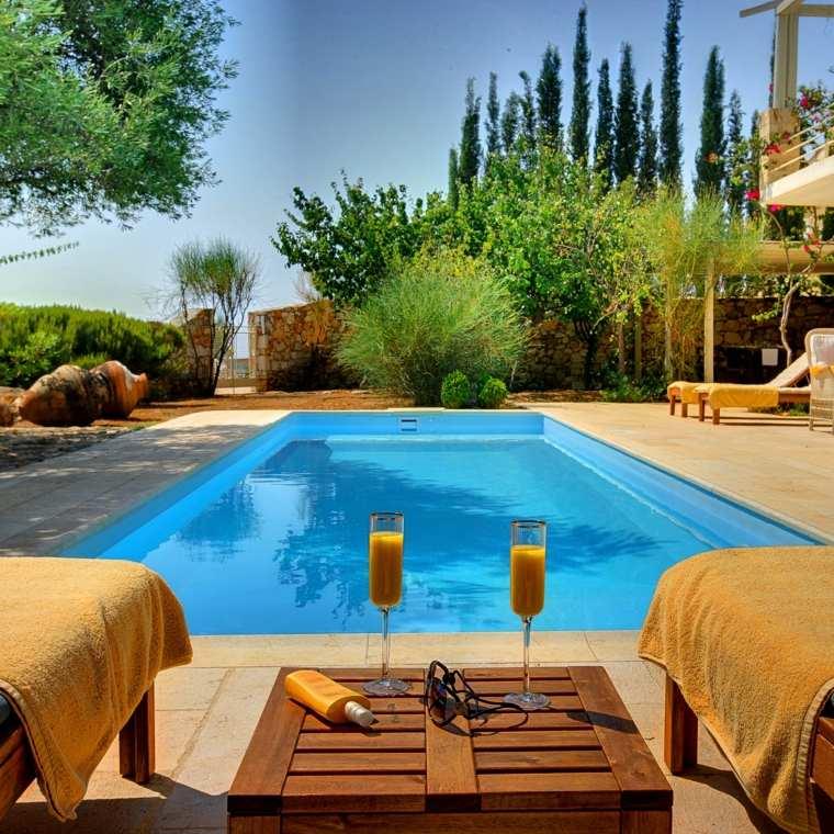 decoración de jardines con piscina plantas diseno simple ideas