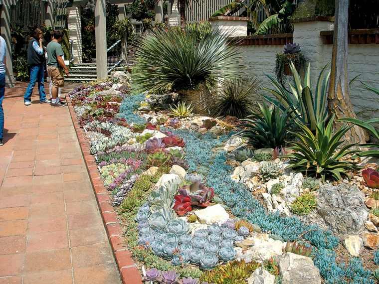 decorar con cactus jardin