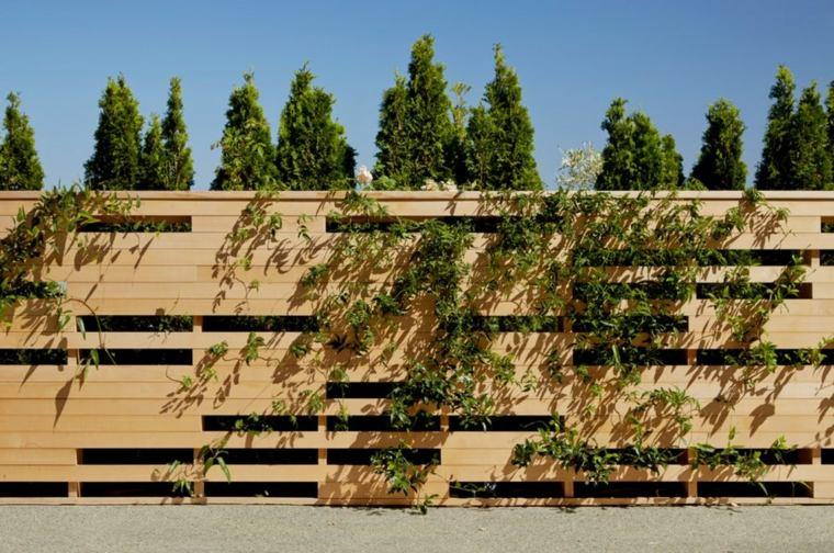 espacio plantas imagenes clara suelos casas ambientes