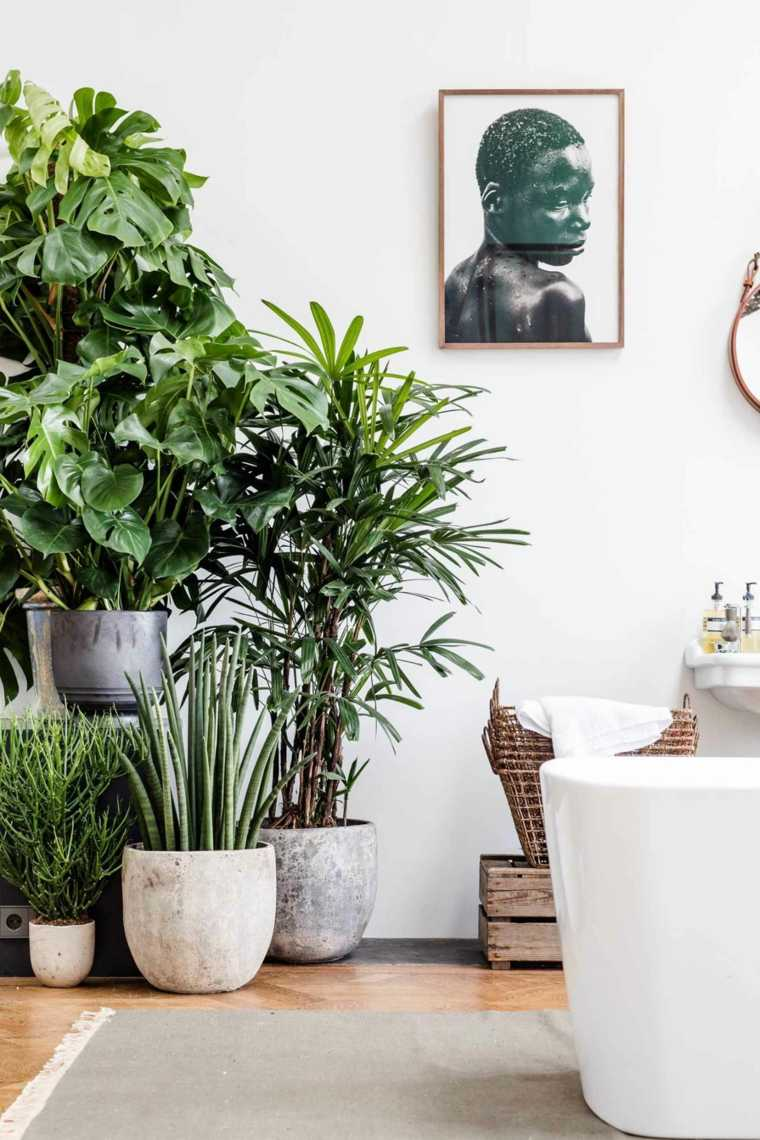 exotico tipo jungla muebles modernos lineas modernas