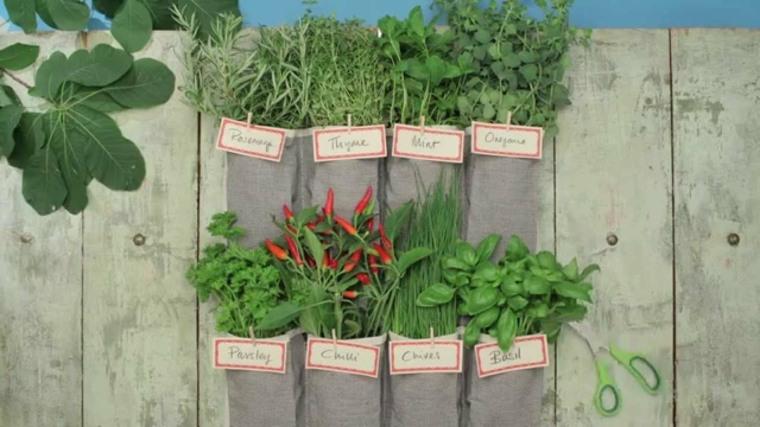 jardin vertical casero jardines verticales caseros aprende a dise arlos y mantenerlos originales ideas huerto vertical