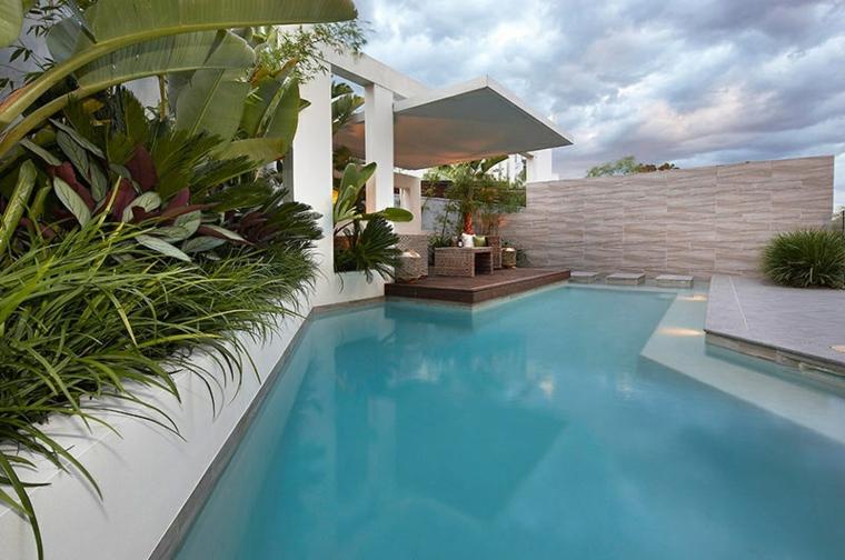 gardens-pools-borders-design-modern-house-palm trees