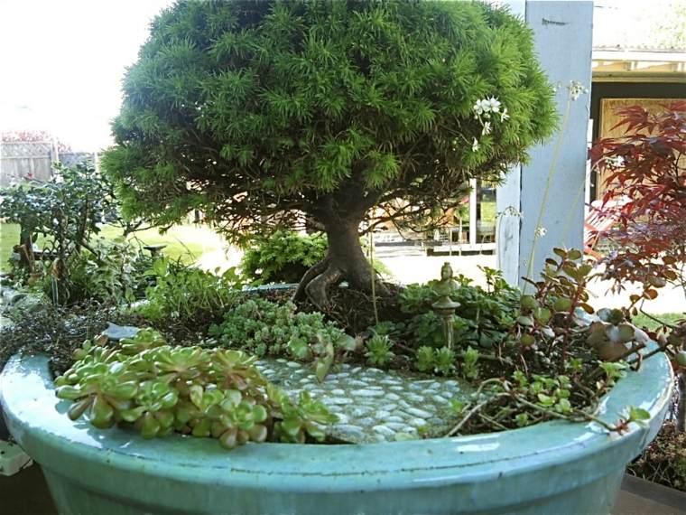 jardines arbolitos