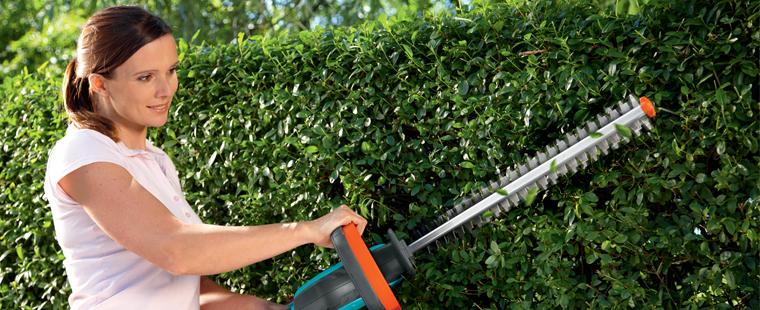 mantenimiento de jardines aprecisos-cortes-formas-cortes