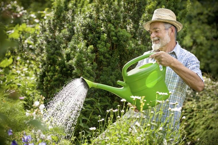 mantenimiento-de-jardines-arbustos-imagenes-regadera