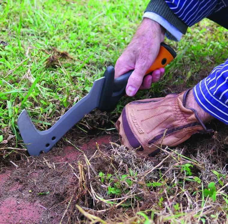 mantenimiento-de-jardines-bordes-plantas-guantes