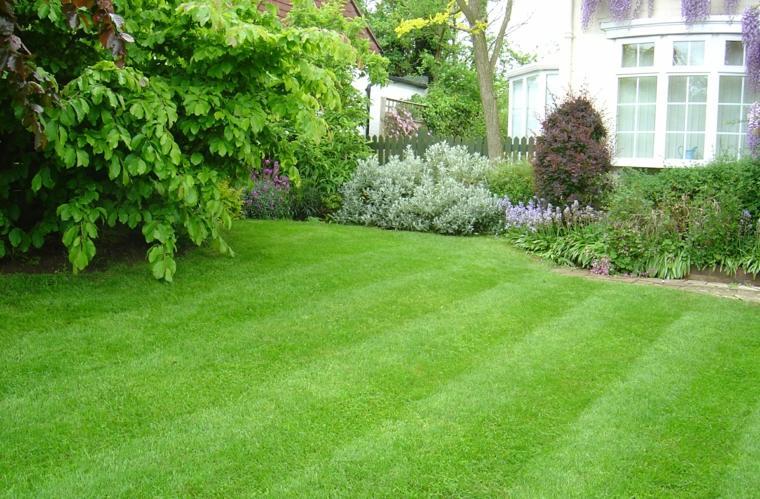 mantenimiento de jardines cesped-conceptos-suelos-arboles