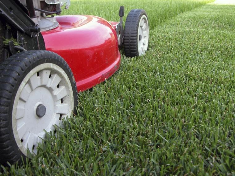 mantenimiento-de-jardines-materiales-poda-salones-imagenes