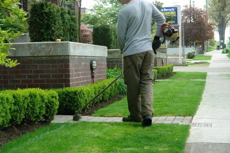 mantenimiento-de-jardines-recogida-hirbas-paredes