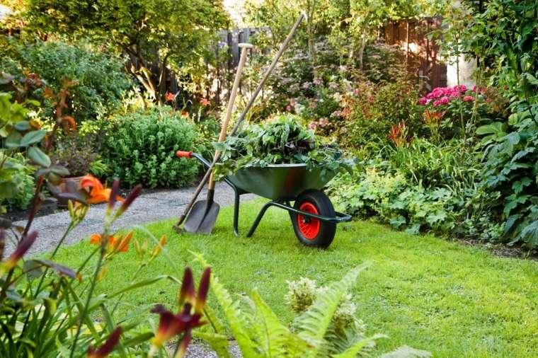 mantenimiento de jardines recogida-plantas-imagenes