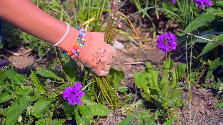 mantenimiento-de-jardines-retirando-malas-hierbas-patios