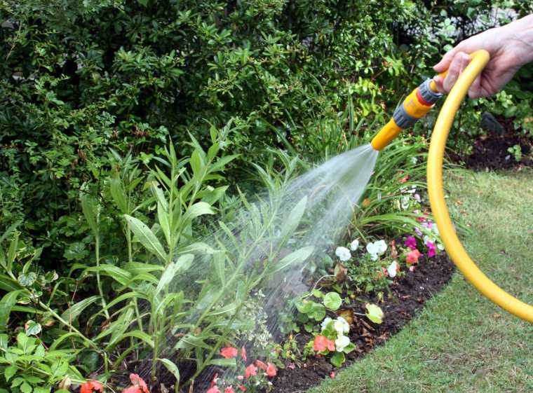 mantenimiento-de-jardines-riego-mangueras-goteo-manual