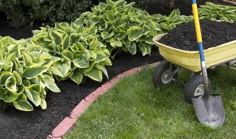 mantenimiento-de-jardines-simples-contrastante-mantillo-rico