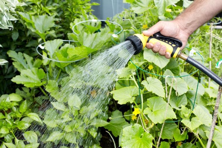 mantenimiento-de-jardines-sitios-especiales-muebles-flores