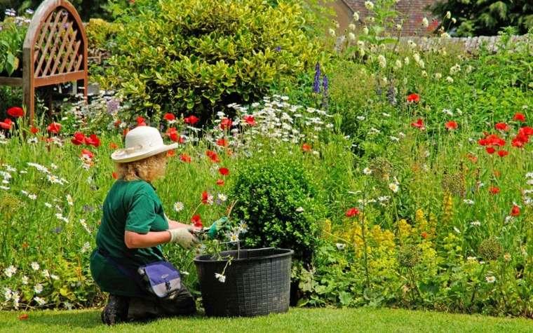 mantenimiento de jardines sombreros-dama-corte-flores