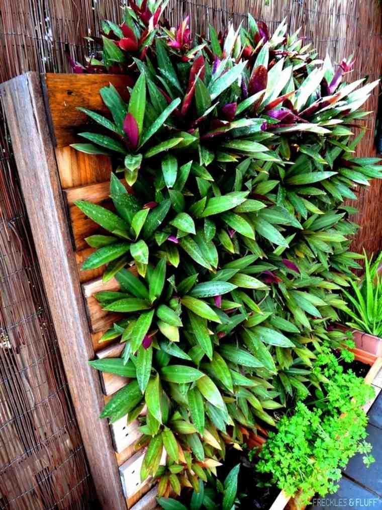 plantas para jardines