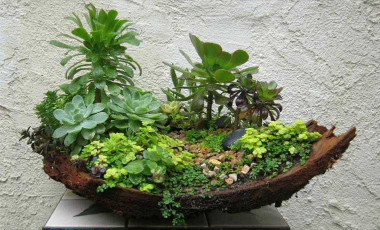 mini jardín corteza