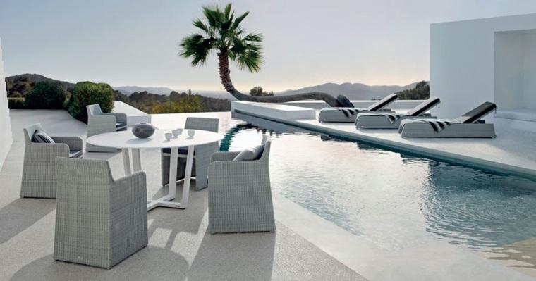 piscina larga estrecha infinita opciones estilo ideas