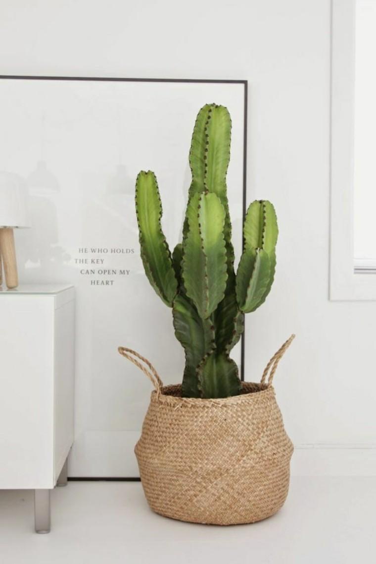 plantadores fibras naturales interiores casas muebles especiales