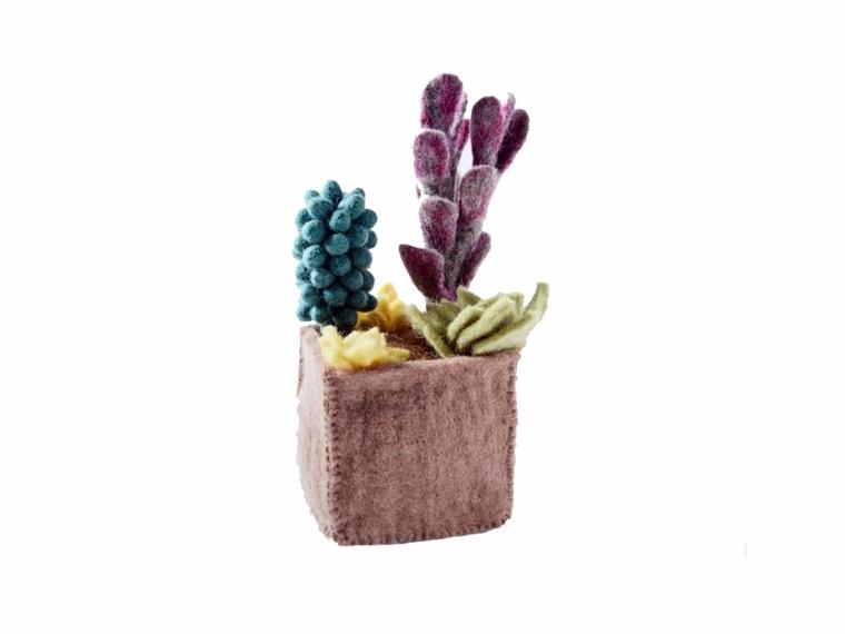 plantas cactus decorar casa