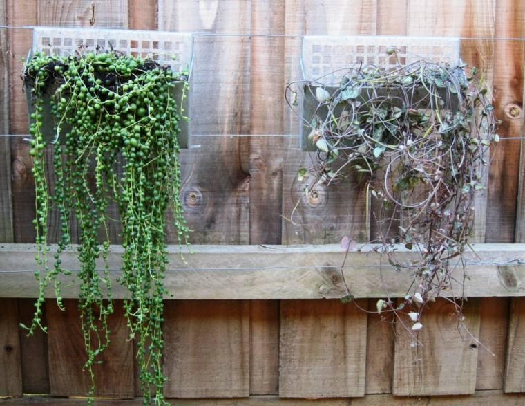 jardin vertical casero jardines verticales caseros aprende a dise arlos y mantenerlos originales ideas jardines verticales